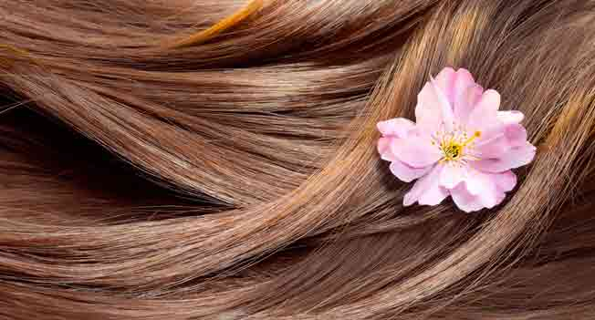 hair conditioners to maintain your hair in a better way
